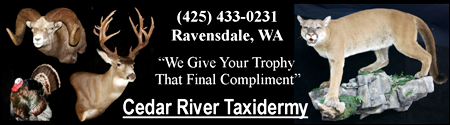 Cedar River Taxidermy, That Final Compliment