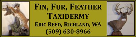 Fin, Fur, Feather Taxidermy