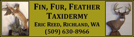 Fin, Fur, Feather Taxidermy